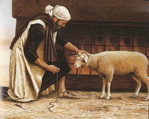 the-lamb-illustration-1